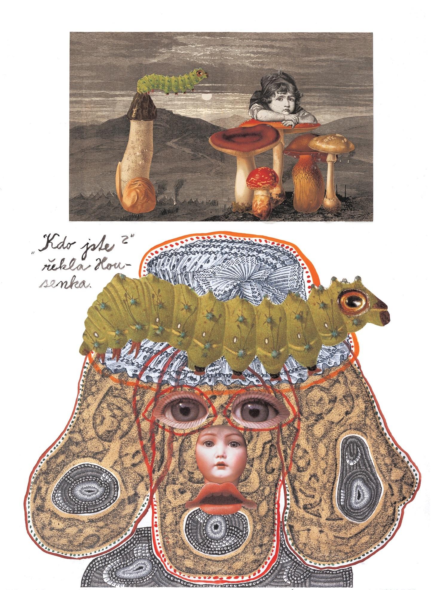 """ヤン・シュヴァンクマ イエル 「芋虫の教え」 Illustration for the book """"Alice"""", 2006, by Jan Švankmaher, (C)Athanor Ltd."""