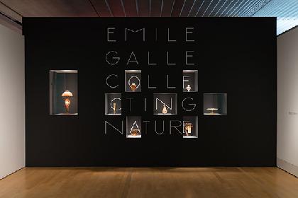 『エミール・ガレ 自然の蒐集』レポート 小さな器に生命の神秘を閉じ込めた、ガレのガラス作品約130点が集結!
