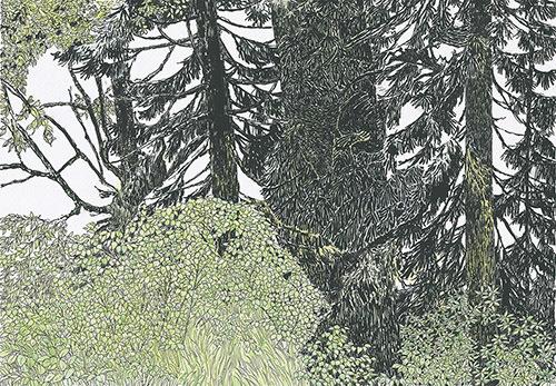 『もりのえほん』18-19P 1977年 津和野町立安野光雅美術館蔵 (C)空想工房