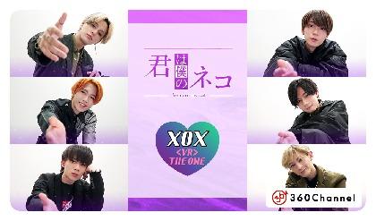 木津つばさ、安井一真、大隅勇太ら XOX の猫になれる VRショートドラマ『君は僕のネコ』が配信