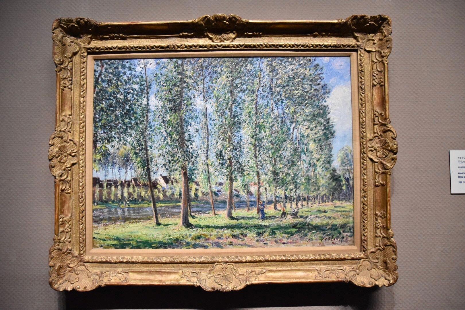 アルフレッド・シスレー 《モレのポプラ並木》 1888年 吉野石膏コレクション