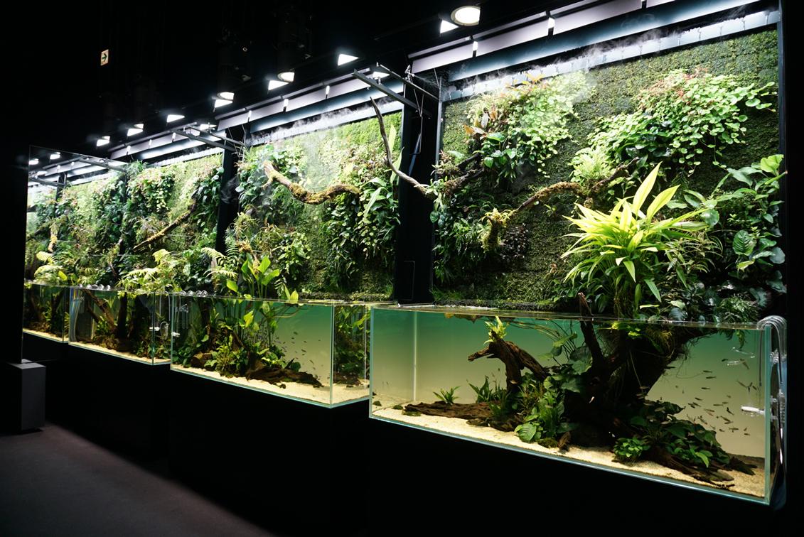 特別水槽「巨大ネイチャー水草ウォール」株式会社アクアデザインアマノ制作