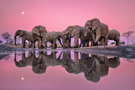 「たそがれどきの巨人たち」フランス・ランティング