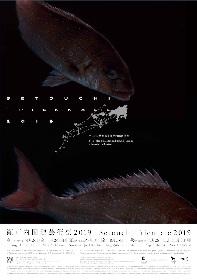 第4回目の開催となる『瀬戸内国際芸術祭2019』は、春・夏・秋の3シーズンで開催