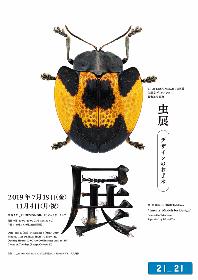 21_21 DESIGN SIGHT企画展『虫展 ―デザインのお手本―』 展覧会ディレクターに佐藤 卓、企画監修に養老孟司