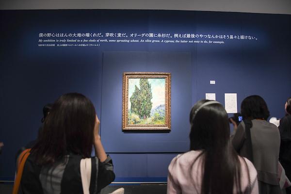 フィンセント・ファン・ゴッホ《糸杉》の展示風景 ※開催期間中の作品の撮影は禁止