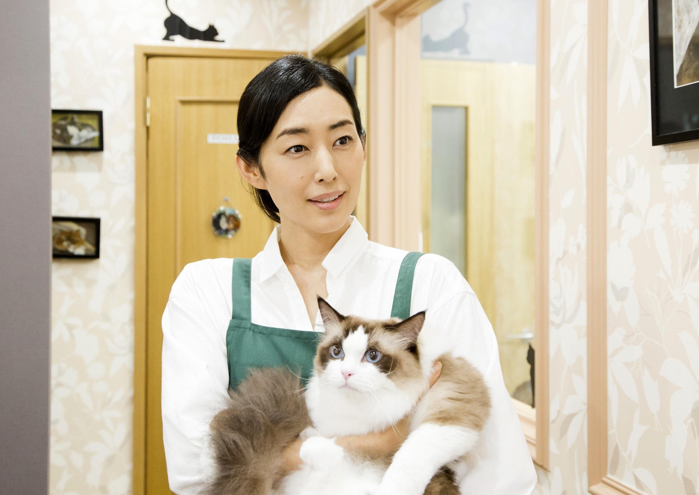 木村多江 (C)2017 Hit-Point/『映画ねこあつめ』製作委員会
