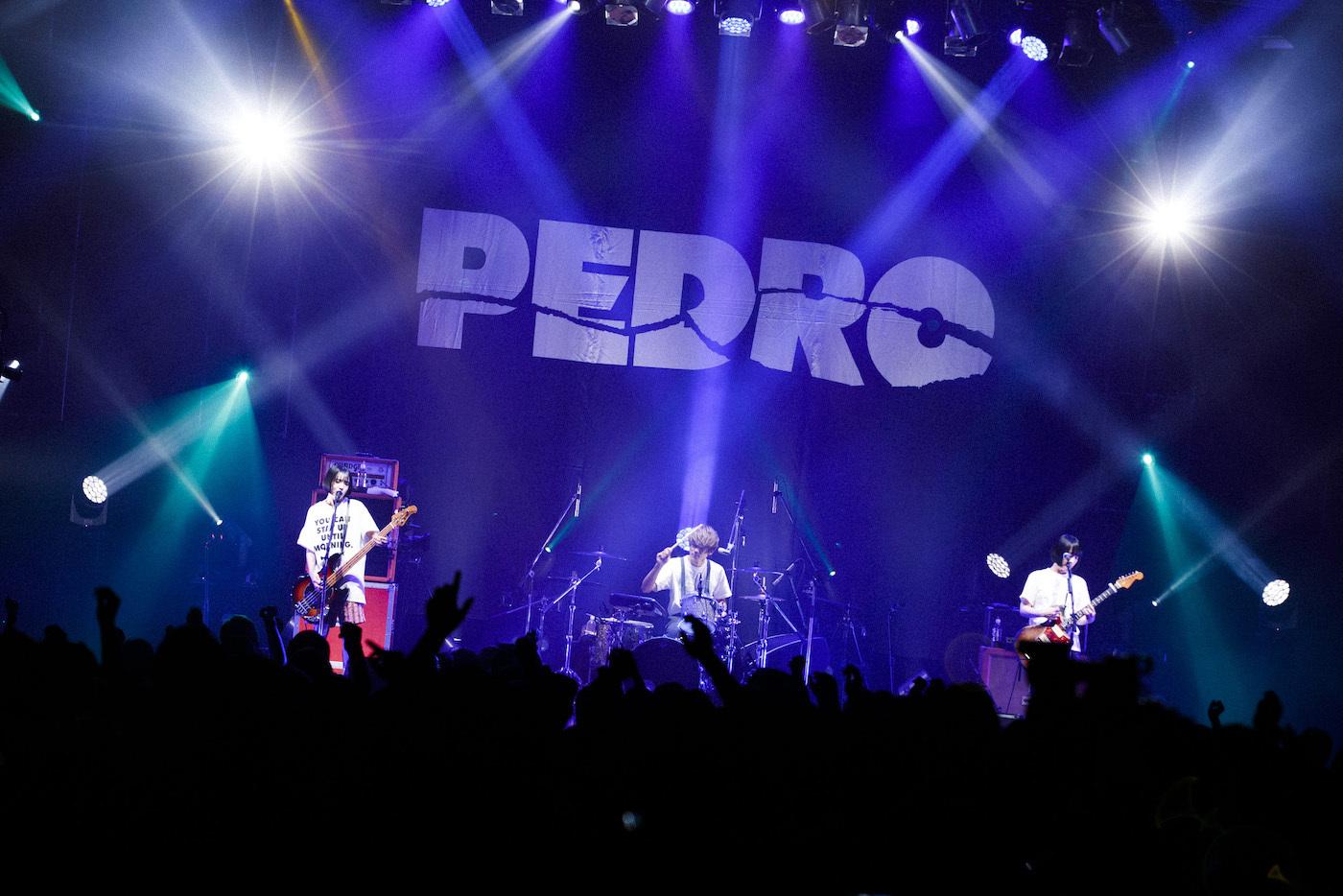 PEDRO Photo by 外林健太