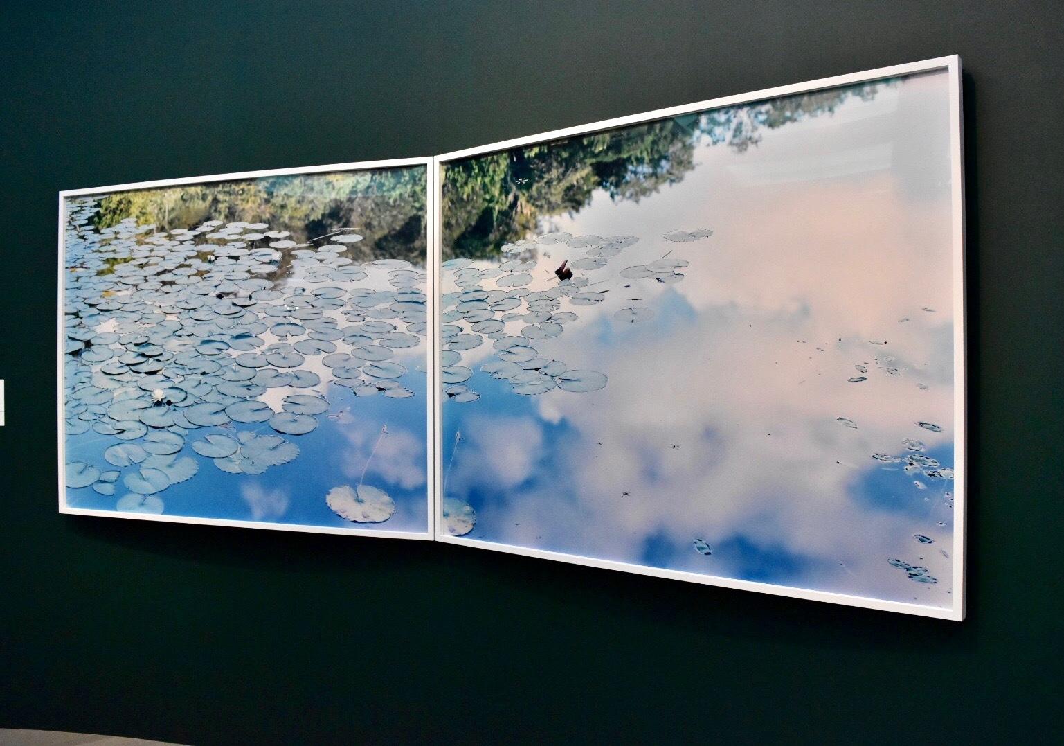 鈴木理策 《水鏡 14, WM-77》(左)《水鏡 14, WM-79》(右) 2014年 作家蔵 (C)Risaku Suzuki, Courtesy of Taka Ishi Gallery