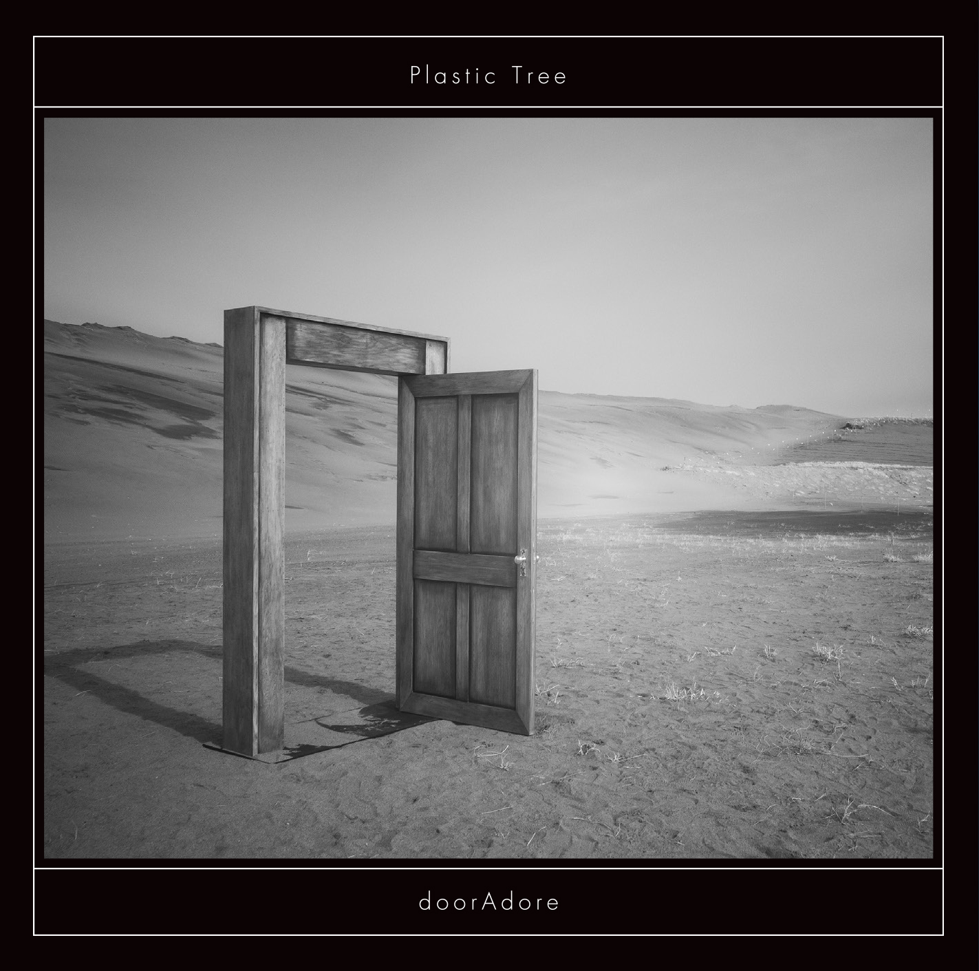 Plastic Tree『doorAdore』通常盤