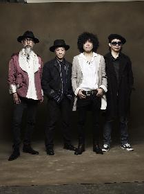 ミック・ジャガーやボノが賛同する国際人権NGOの日本ライブイベントにシアターブルック、the band apart