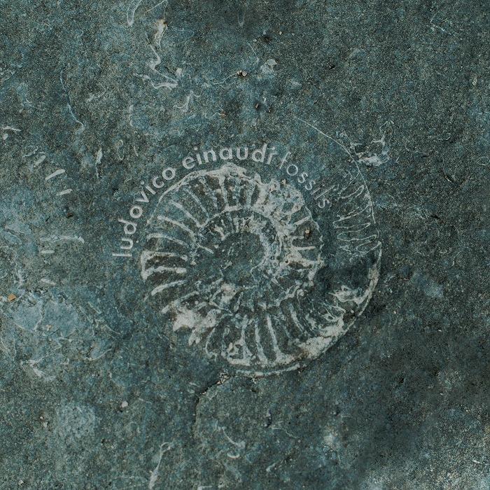 配信シングル「Fossils」デジタル・シングル ジャケット写真