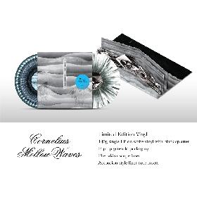 コーネリアス アルバム『Mellow Waves』USアナログ輸入盤を緊急販売