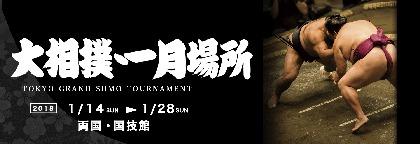 貴乃花部屋の21歳が初小結へ! 大相撲1月場所の番付が発表