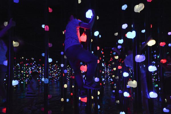 「光の森の3Dボルダリング」