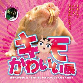 """30種類以上の""""キモかわいい""""動物を集めた『キモかわいい展in大阪』、京セラドーム大阪で開催"""