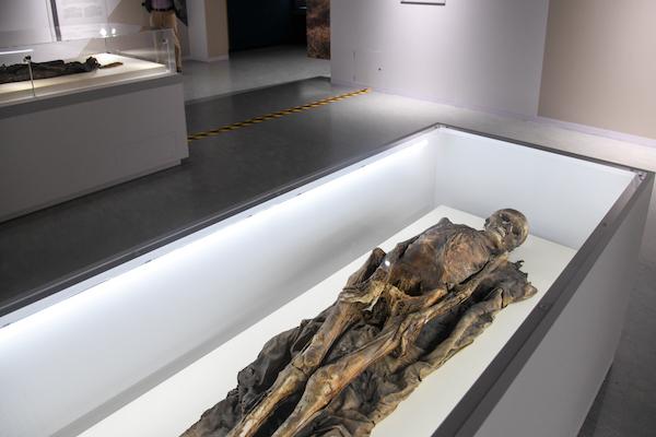 《カナリア諸島のミイラ》の展示風景  カナリア諸島(テネリフェ) 1250年-1350年頃 ゲッティンゲン大学人類学コレクション