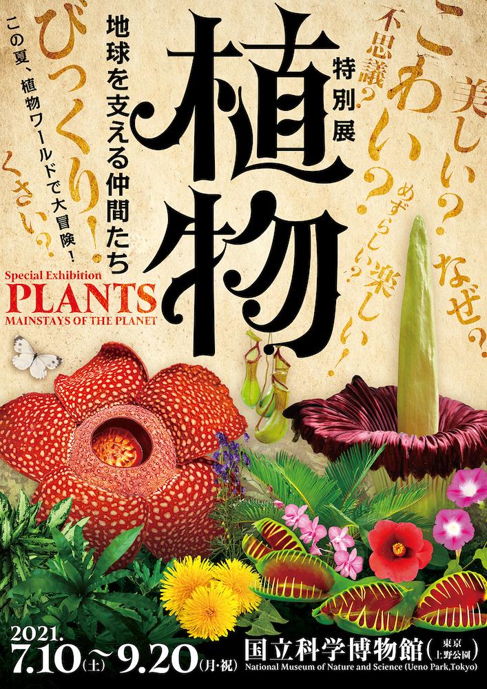 特別展『植物 地球を支える仲間たち』