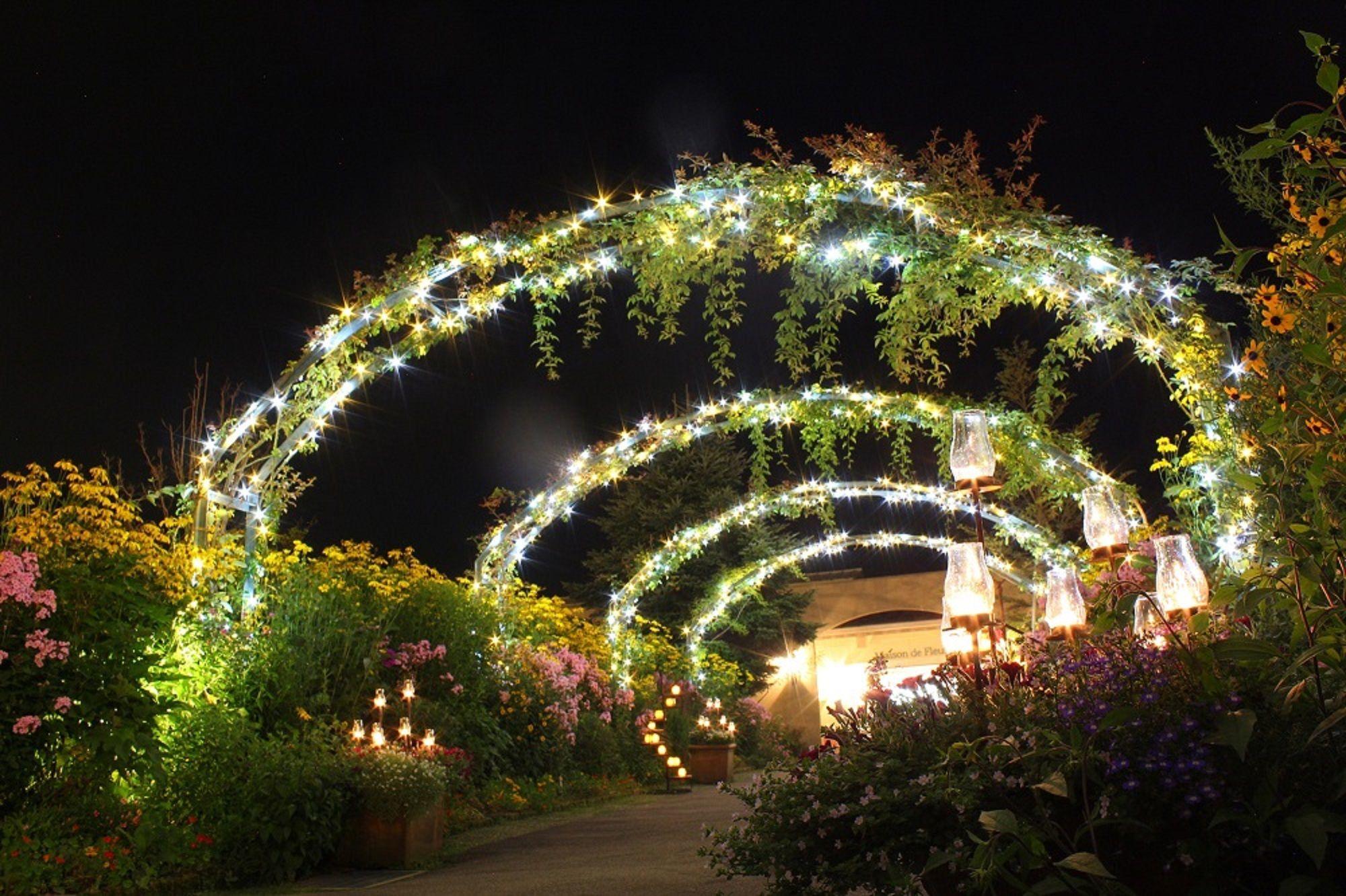 ジャルダン・デ・ルミエール ~光の庭園~