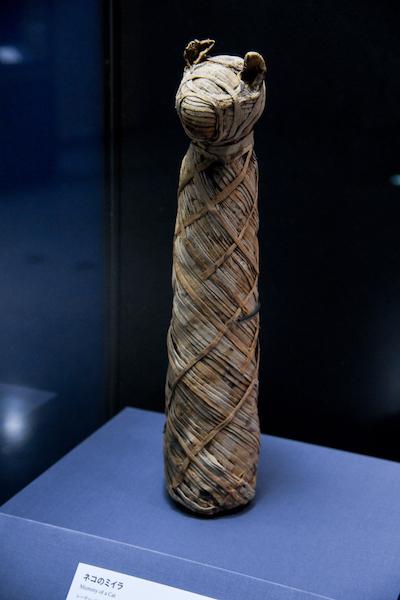 《ネコのミイラ》 エジプト 出土地不詳 グレコ・ローマン時代、紀元前200年-前100年頃 レーマー・ペリツェウス博物館