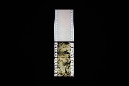 『平川祐樹―映画の見る夢』展、ポーラ美術館の現代美術展示スペース「アトリウム ギャラリー」で開催