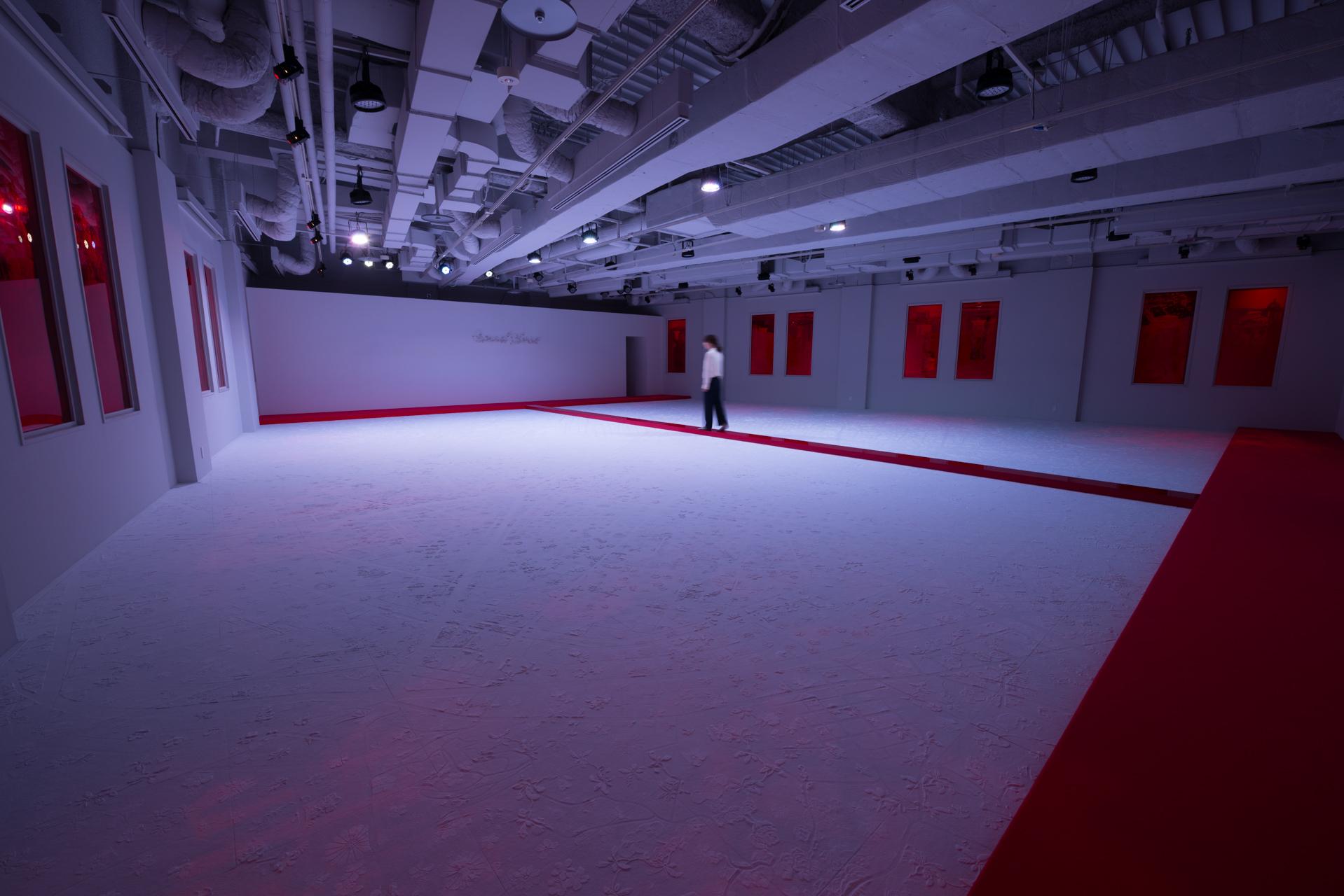 大巻伸嗣 / Shinji Ohmaki《Echoes - Genius Loci》2017 Material: felt, crystal pigments, mirror, acrylic, etc  Size: w16 × d13 × h3.2 (m)   Photo: Ken KATO