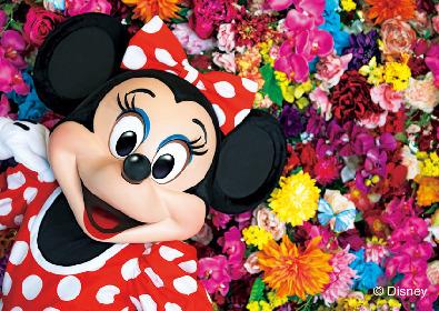 写真家・蜷川実花×ディズニー、コラボ写真集が発売 ディズニープリンセスや和装のミッキーなど全128作品を掲載