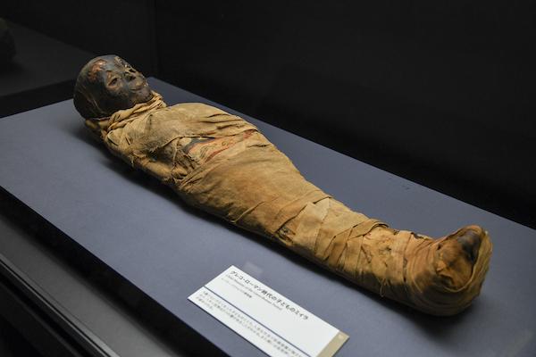 《グレコ・ローマン時代の子どものミイラ》 エジプト 出土地不詳 グレコ・ローマン時代、紀元前38頃-後59年頃 レーマー・ペリツェウス博物館
