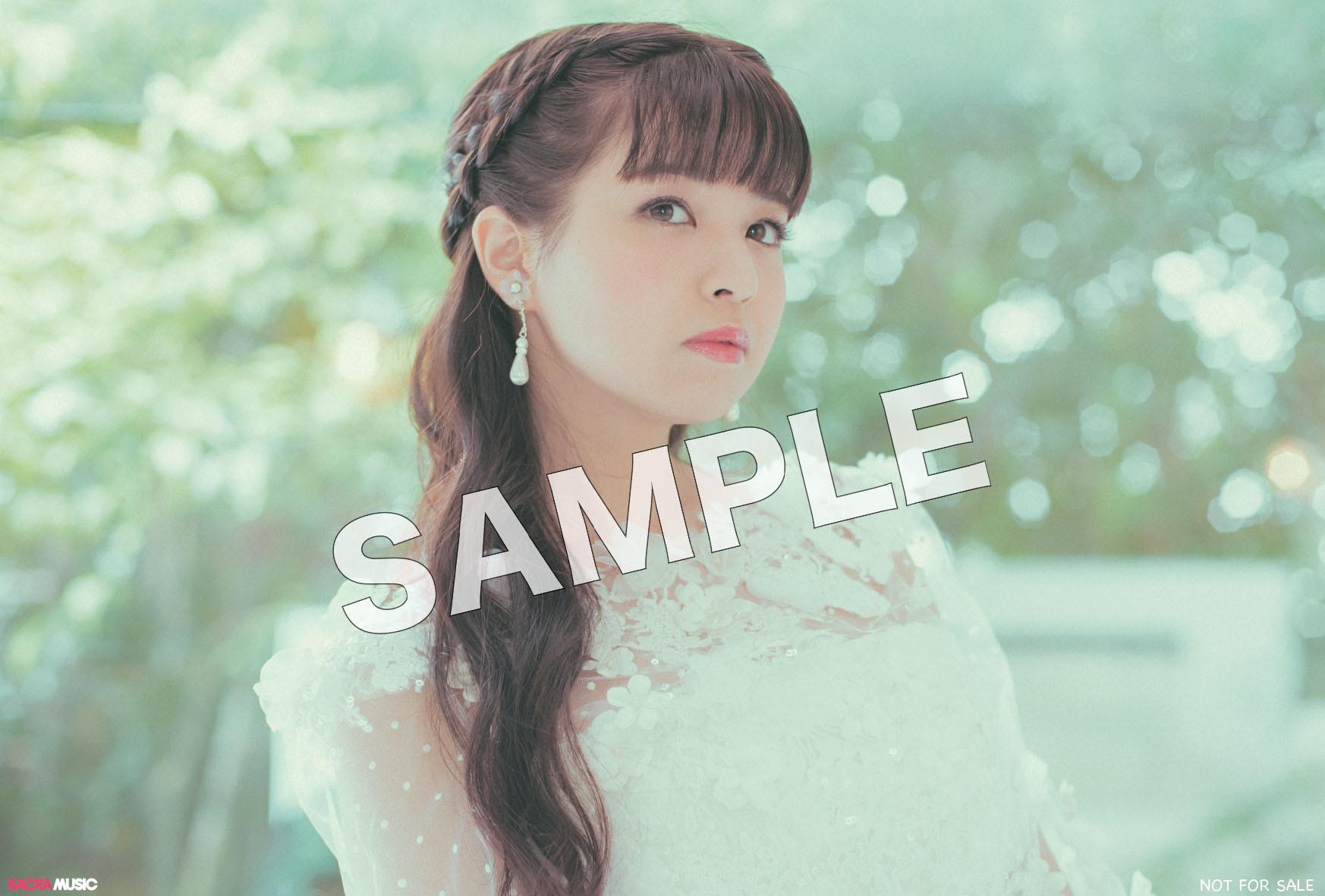 sample_応援店