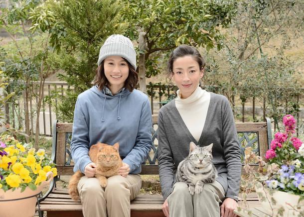 「連続ドラマW グーグーだって猫である2 -good good the fortune cat-」に出演する前田敦子と宮沢りえ。(c)WOWOW