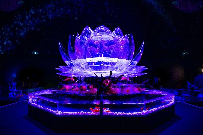 幻想的な『アートアクアリウム展〜大阪・金魚の艶〜』開幕、木村英智総合プロデューサーの野望は「世界中の人に観てもらいたい」