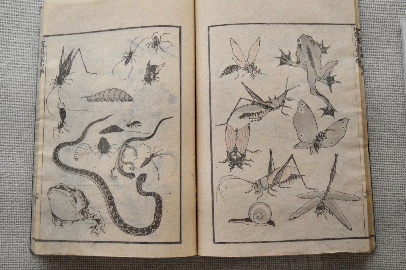 葛飾北斎 『北斎漫画』初編 文化11年(1814)すみだ北斎美術館所蔵