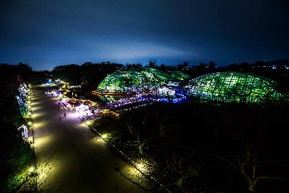 クリスマスシーズンの京都、穴場デートにおすすめ!京都府立植物園「イルミネーション2018」