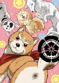 リアル犬キャストによる時代劇開幕? TVアニメ『織田シナモン信長』全編実写ティザーPV解禁! 追加キャストも発表