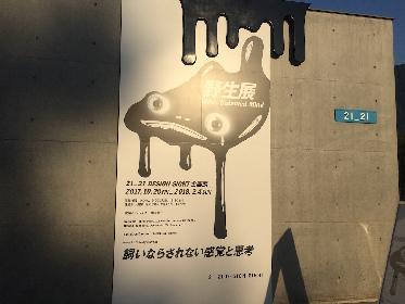芸術の秋、ぶらっと展覧会に出かけてみよう 【SPICEコラム連載「アートぐらし」】vol.5 力石咲(美術家)