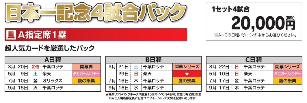 日本一記念4試合パックの詳細