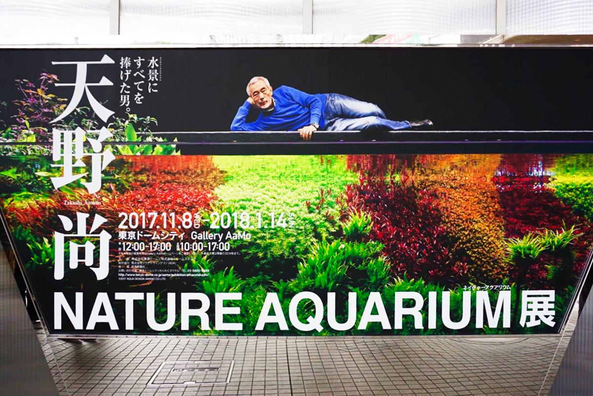 『天野尚 NATURE AQUARIUM展』会場入口ポスター