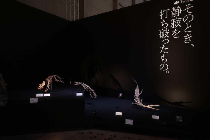 「フィールドツアー」展示風景(川で小型のワニに襲われてびっくりする幼いトリケラトプス)