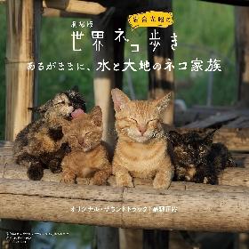 『劇場版 岩合光昭の世界ネコ歩き』オリジナル・サウンドトラックCD発売
