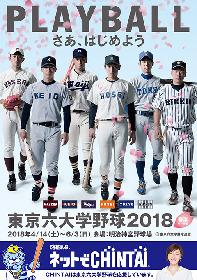 プロも注目の選手が神宮に集結! 『東京六大学野球 春季リーグ』が開催中
