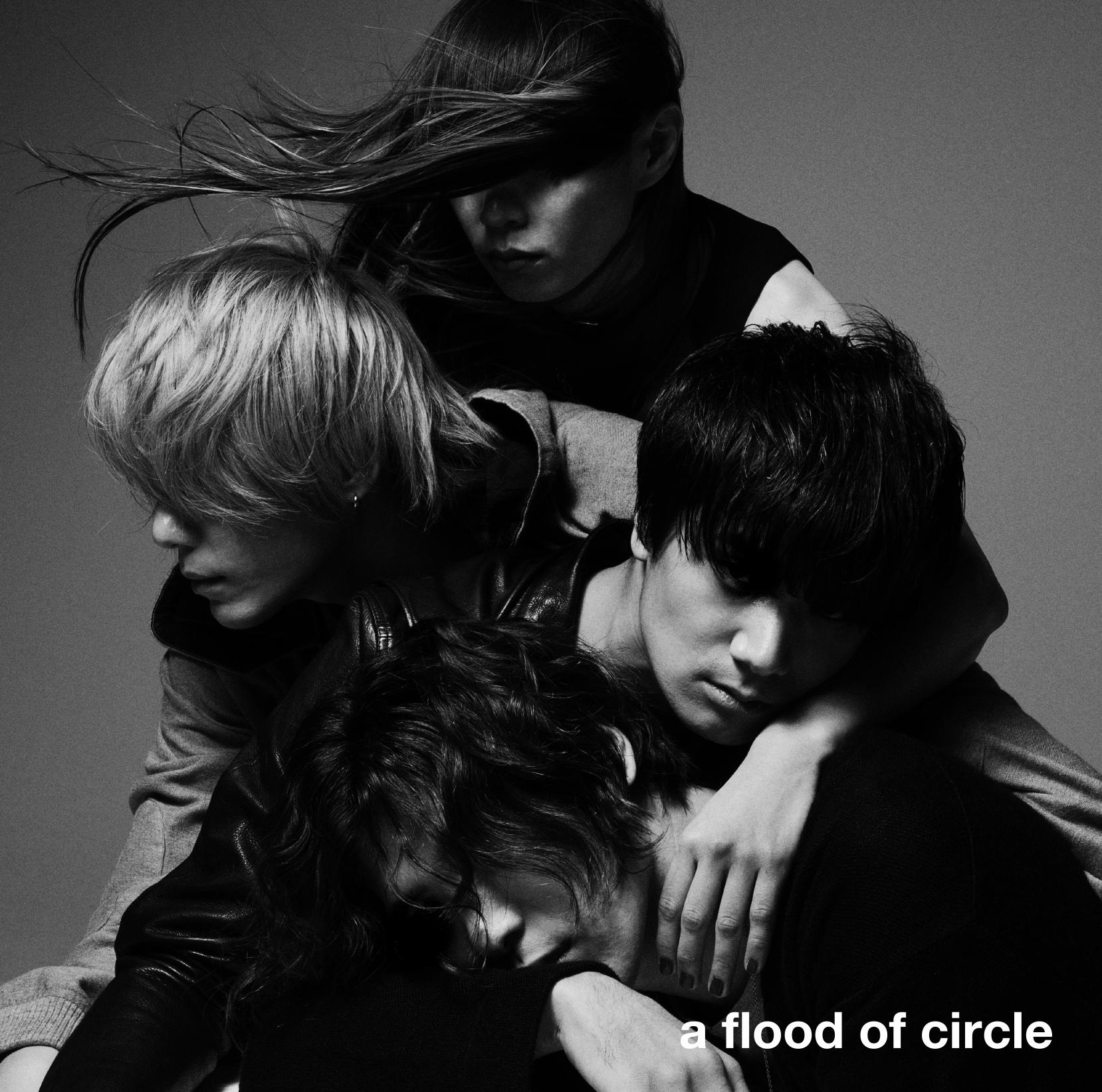 『a flood of circle』