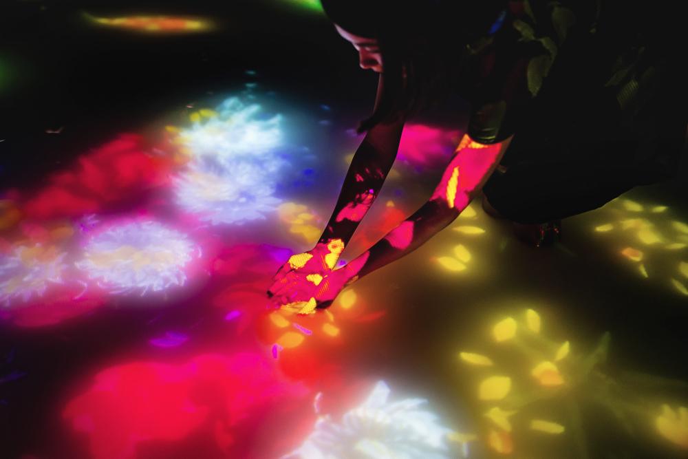 人と共に踊る鯉によって描かれる水面のドローイング