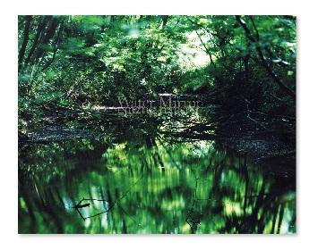鈴木理策、奈良美智の写真集が刊行 代官山フォトフェアの開催にあわせて