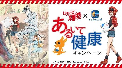 花澤香菜のコメント到着 『はたらく細胞×すこやかんぽコラボ 健康キャンペーン』開催、応援ボイスなど盛りだくさん