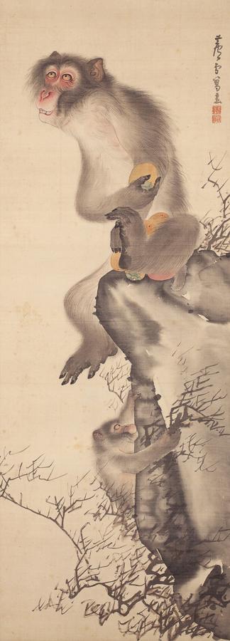 お披露目された、長沢芦雪《猿猴弄柿図》18世紀 個人蔵