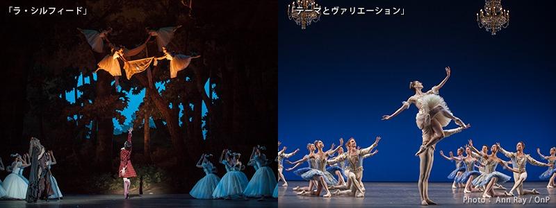 「ラ・シルフィード」「テーマとヴァリエーション」 NBS日本舞台芸術振興会 公式サイトより引用