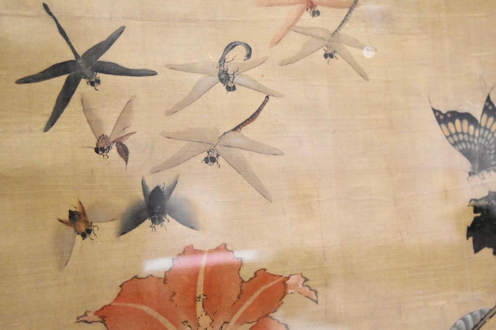 葛飾北斎 《南瓜花群虫図》(部分) 天保14年(1843)すみだ北斎美術館所蔵