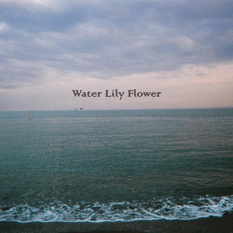 フジファブリック「WaterLilyFlower」配信ジャケット