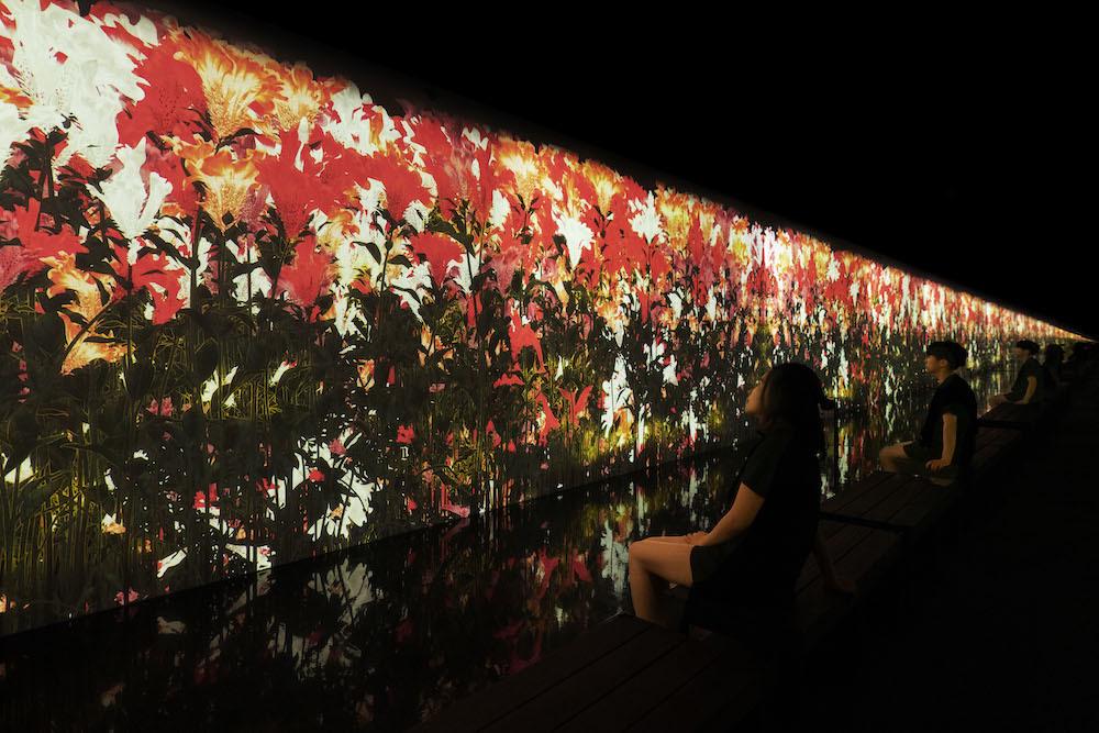 降り注ぐ雨の中で増殖する無量の生命 - A Whole Year per Year / Proliferating Immense Life in the Rain - A Whole Year per Year  teamLab, 2020, Interactive Digital Installation, Sound: Hideaki Takahashi