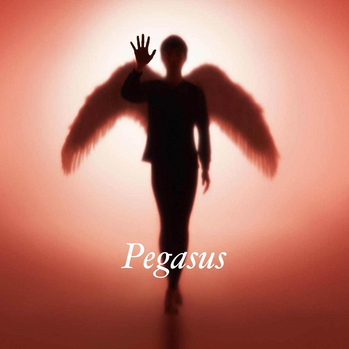 布袋寅泰『Pegasus』
